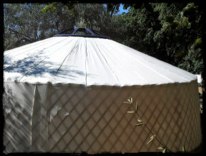 interior canvas yurt